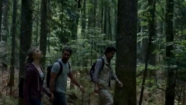 Поиски в лесу
