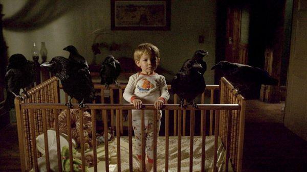 Ребенок и вороны
